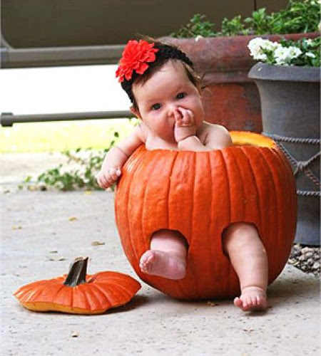 Happy Hallowen e Happy Quinta Flower! by Menina Prendada -