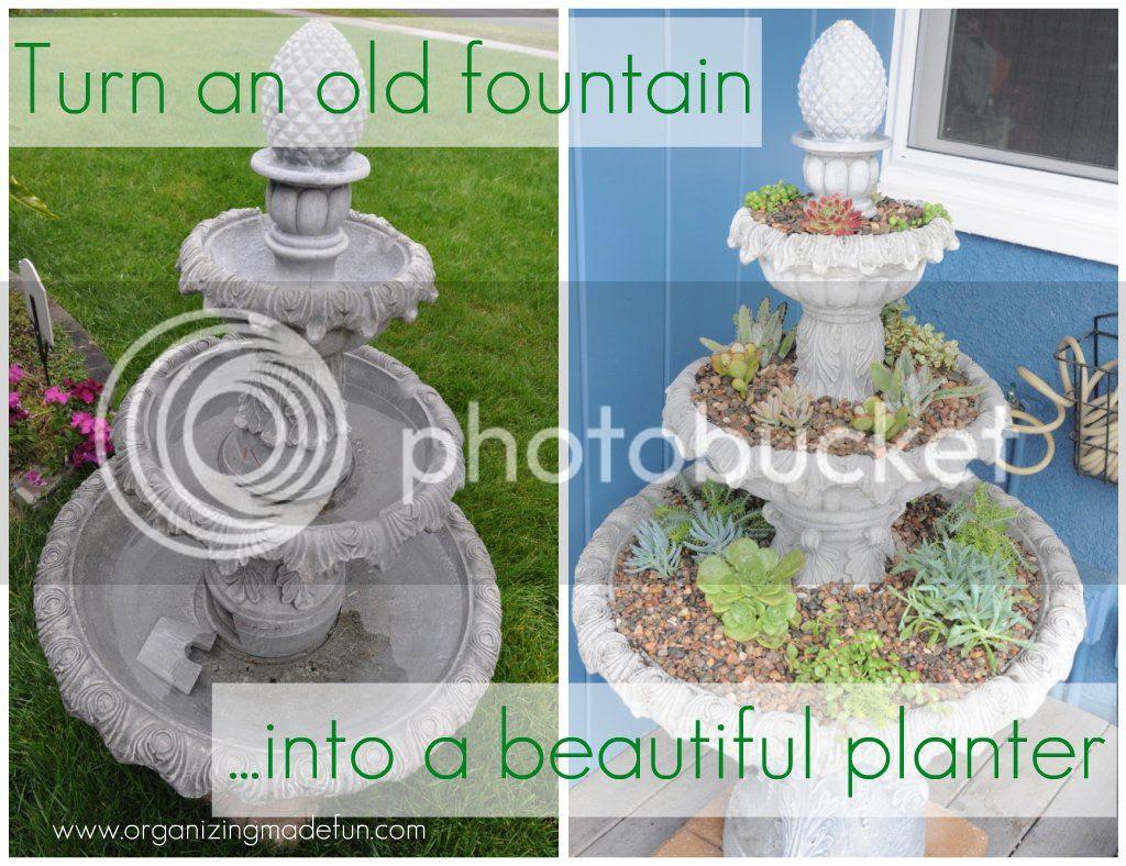 fountain succulents planter