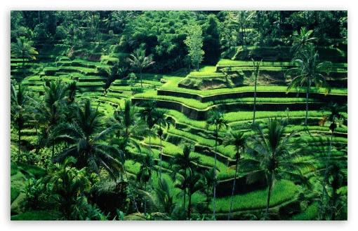 Download 7700 Koleksi Wallpaper Pemandangan Indah Full Hd Gambar HD Terbaru