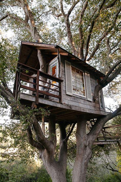 built   tree house design dapofficecom