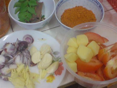blog cik ina   cheng kari ayam simple style india