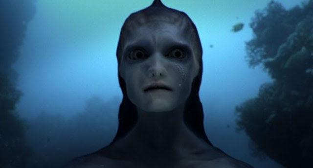 sereia-3-animal-planet[1]