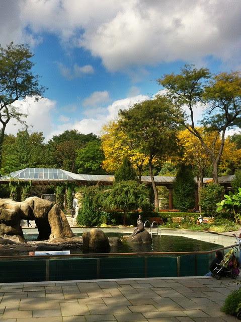 October 20, 2011 Central Park