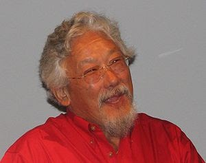 David Suzuki Maggots Video