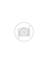 Secret Door Latches Photos