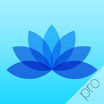 5分間の瞑想:28日間のマインフルネス瞑想コース