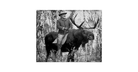 Teddy Roosevelt Riding A Bull Moose Poster   Zazzle.com