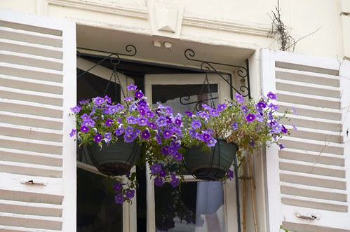 Paris purple