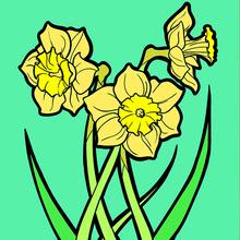 Primavera Dibujos Para Colorear Manualidades Para Niños Dibujo