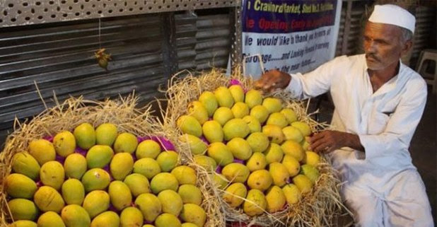 Taste Haji Kalimullah's New Variety of Mango Named After Amit Shah