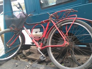 Ciclista foi atropelado na Rio-Santos em Ubatuba (Foto: Divulgação/Polícia Civil)