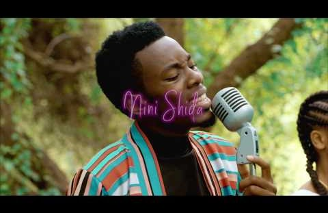 Download or Watch(Official Video) Mayunga – Nini shida