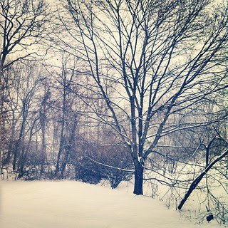 """Snow Day! The start of 6-14""""... Wonder where our jackpot will  hit? #winterwonderland #newengland #morning #snowing #snow #snowflakes"""