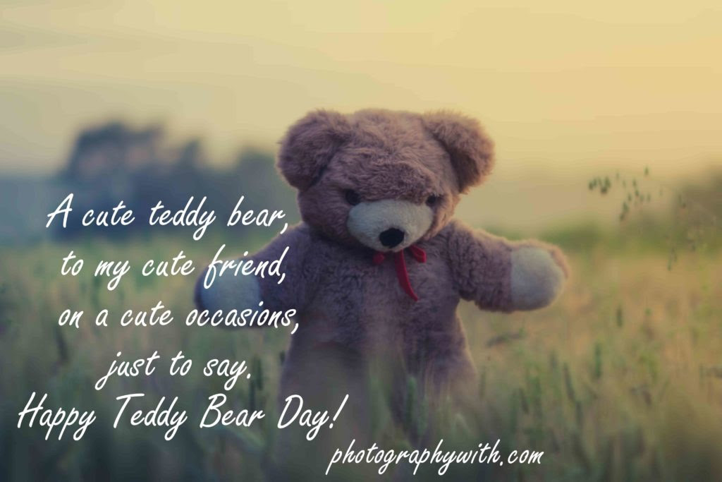 100 Lovely Teddy Day Quotes With Images For Your Loved One 2018