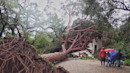 Photos: Deadly storm slams California with flooding rainfall, damaging winds