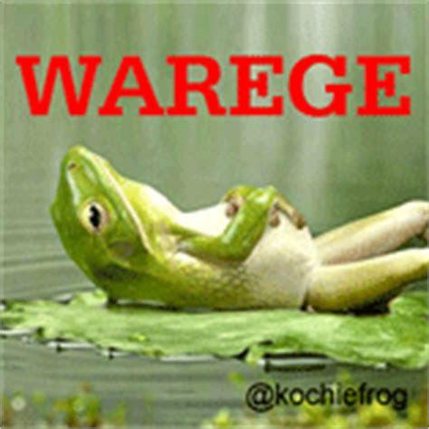 dp bbm terbaru  gambar animasi gif ngakak kochie frog