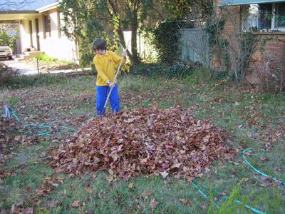 raking 2