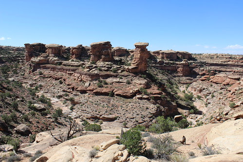 IMG_2721_Canyonlands_NP_Needles_District