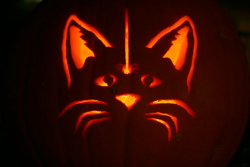 Kitty Jack 'O Lantern