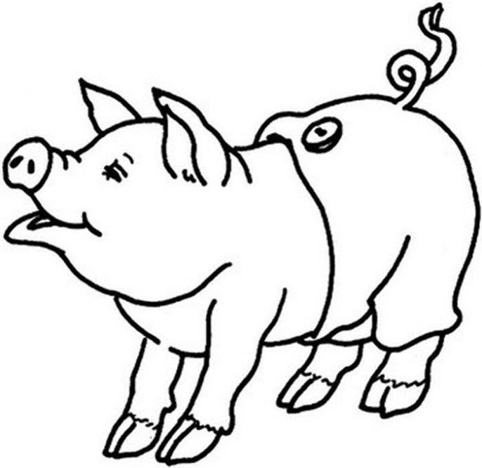 Dibujo De Cerdo Con Pantalones Para Colorear Dibujos Infantiles De