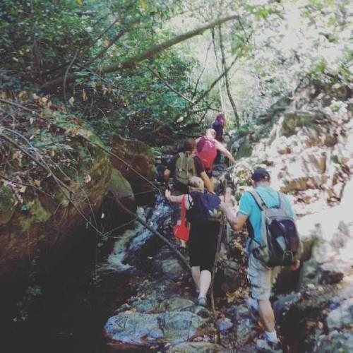 Excursión al #Montseny #Espaisingle #Espaisinglesenderismo (en Fairmont Rey Juan Carlos I)