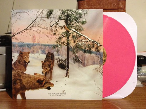 The Jealous Sound - A Gentle Reminder LP - Pink Vinyl by Tim PopKid
