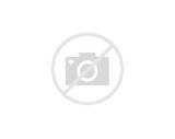 Images of Alternative Renewable Fuel Sources
