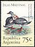 Falkland Steamer Duck Tachyeres brachypterus