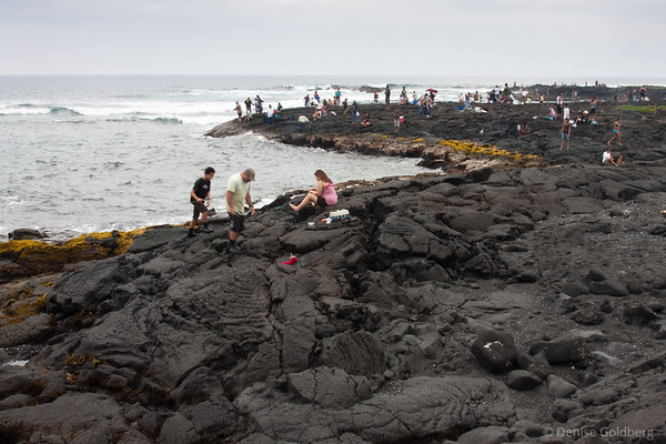 Punalu'u Black Sand Beach, rocks absolutely covered with humans fishing