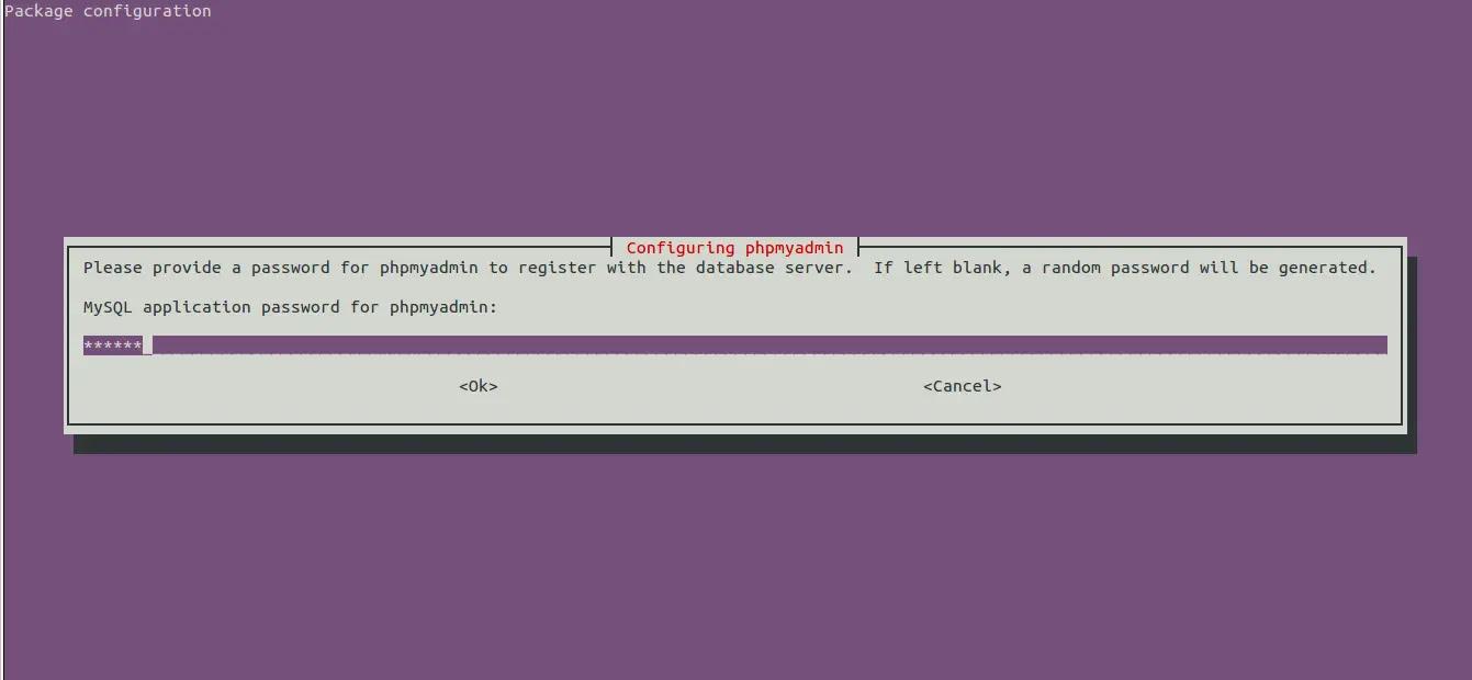 phpmyadmin password during installation