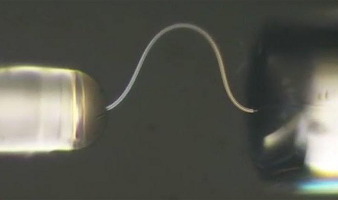 Китайские ученые создали гибкий лед, который можно гнуть и завязывать узлами