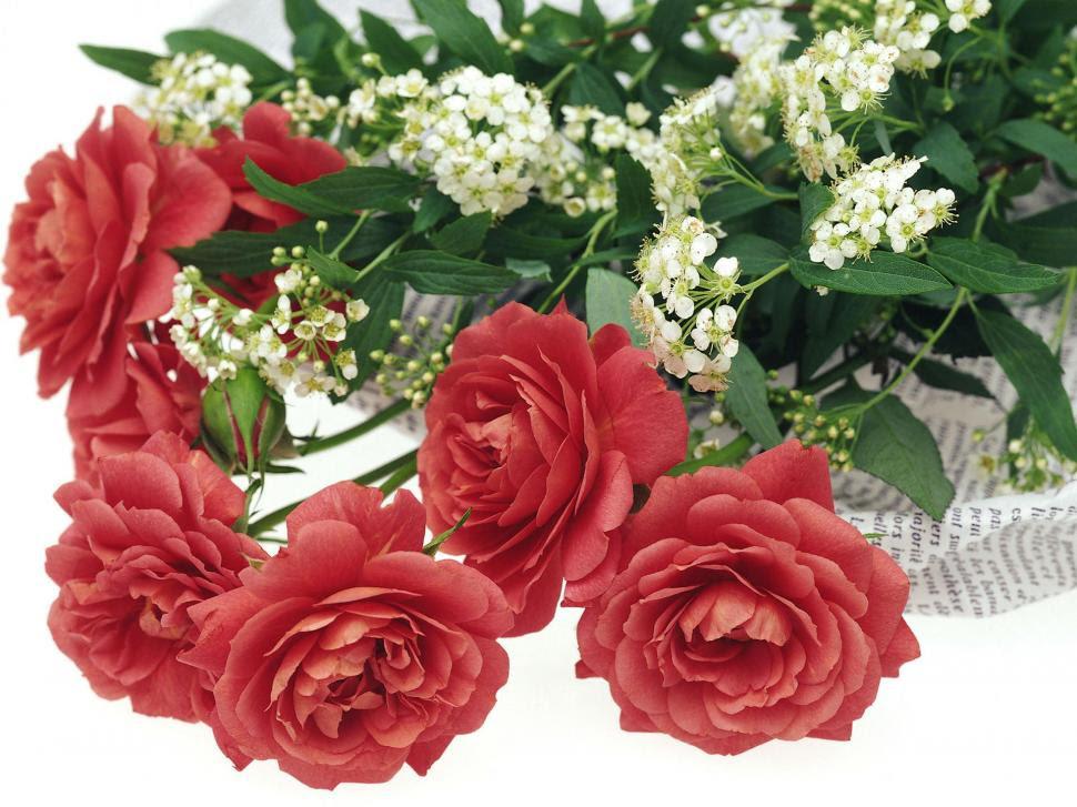 Romantic Red Roses Wallpaper Love Wallpaper Better
