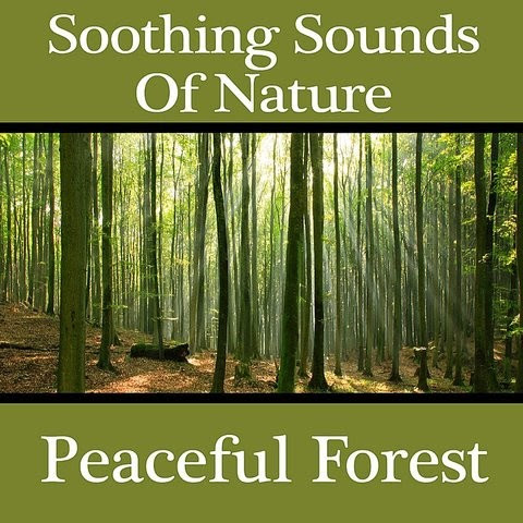 Free Download Nature Music