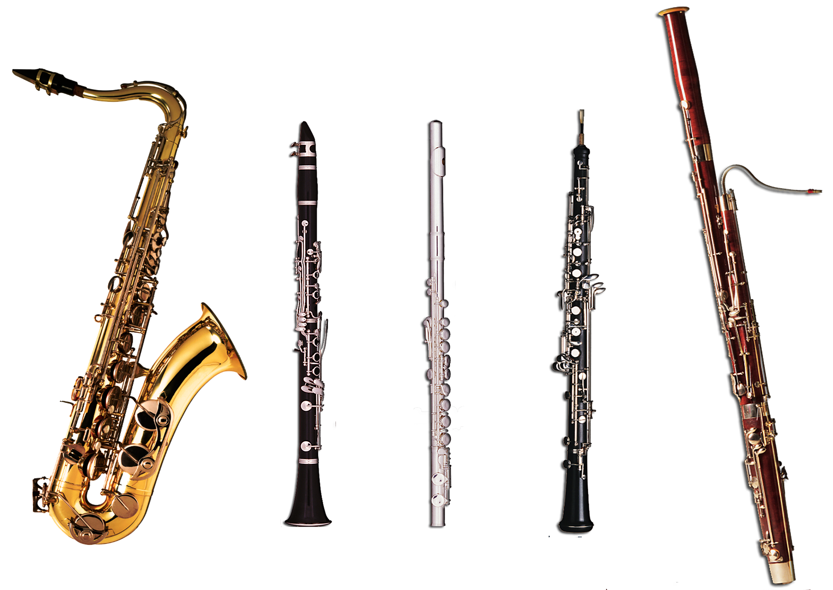 Miss Jacobsons Music INTRODUCTION TO INSTRUMENTS WOODWIND VIDEOS