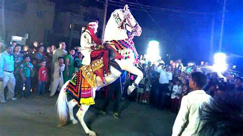 Horse Dance at Indian Wedding Ceremony   YouTube