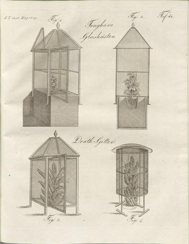 Neue Erfindung mehrerer Geräthschaften zur Wartung... mehr' (hand-coloured botanical engraving courtesy kulturerbe niedersachsen)