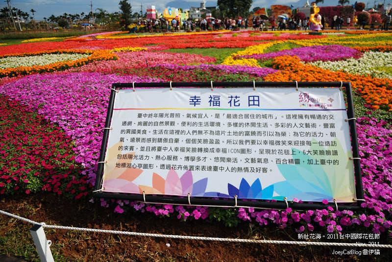 2011_1113_新社花海DSC_3477