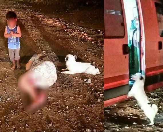 Após mãe sofrer tentativa de homicídio, filho de 2 anos está com tia (Foto: Polícia Militar/Divulgação)