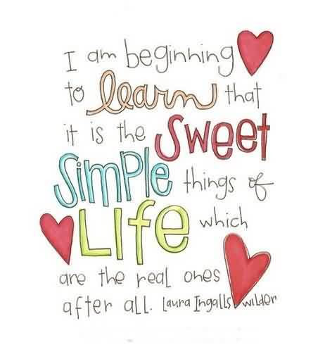 Nice Life Quotes Simple Things Of Life Quotespictures Com