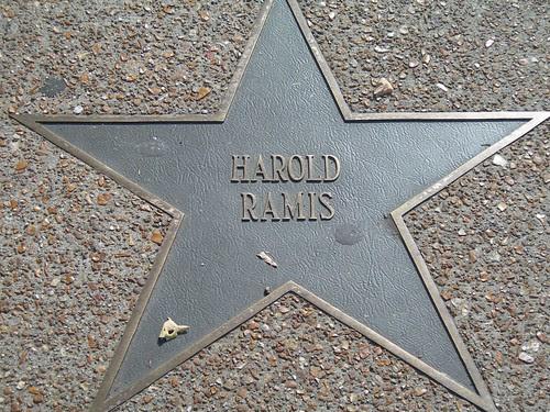Harold Ramis star