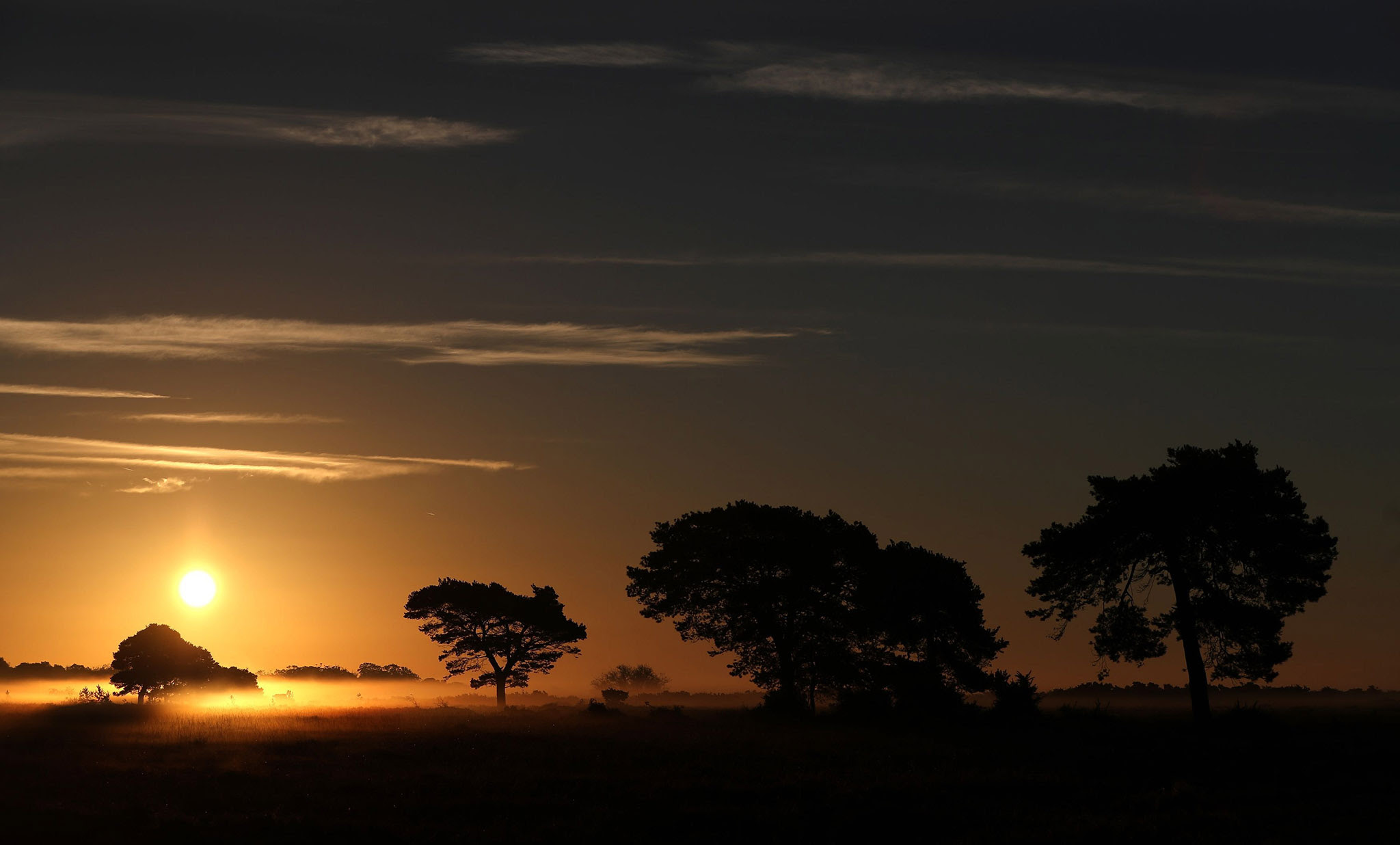 The sun rises over the New Forest in Hampshire. PRESS ASSOCIATION Photo. Picture date: Thursday October 27, 2016. Photo credit should read: Andrew Matthews/PA Wire