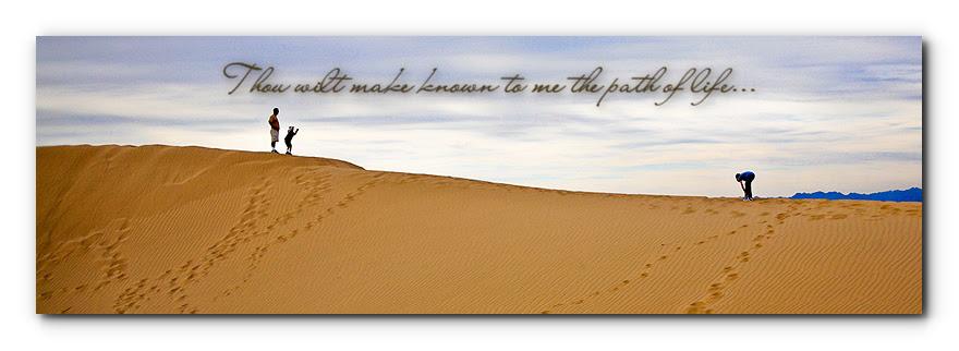 footsteps in sand dunes 2