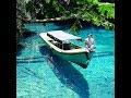 Wisata Alam Kalimantan Timur Pesona Berau