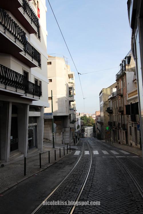 tram trail