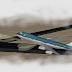 El Peor Accidente De la Historia De Aviación