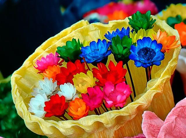 Colored Flowers Bouquet Detail in La Rambla dels Flors, Barcelona