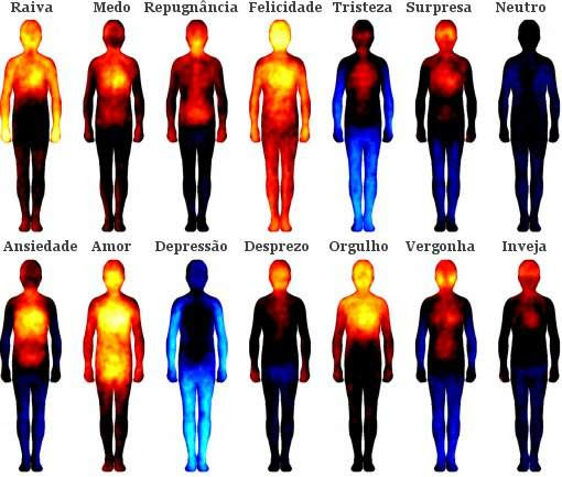 Mapa das emoções relaciona área do corpo com cada emoção