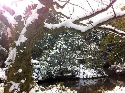 Beside a pond in Oyama Shrine