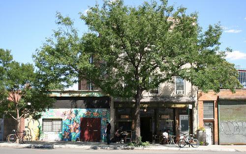 Best tree in Brooklyn