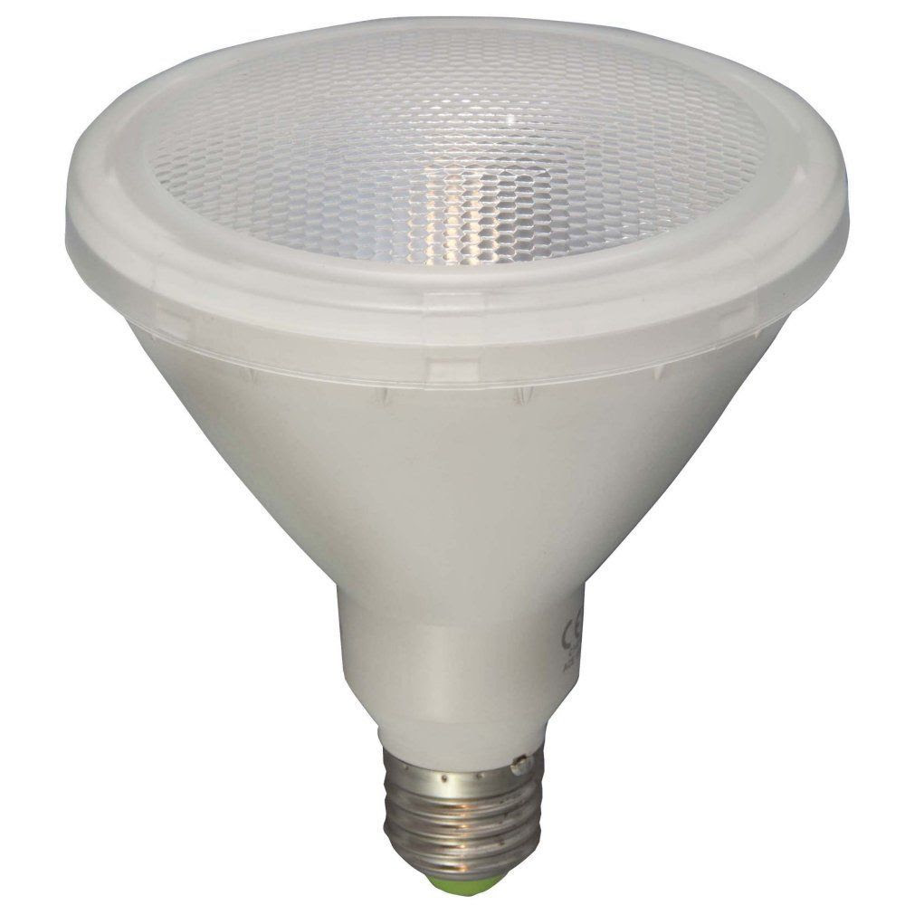 BELL 05650 15 watt PAR38 Outdoor LED Reflector Light Bulb